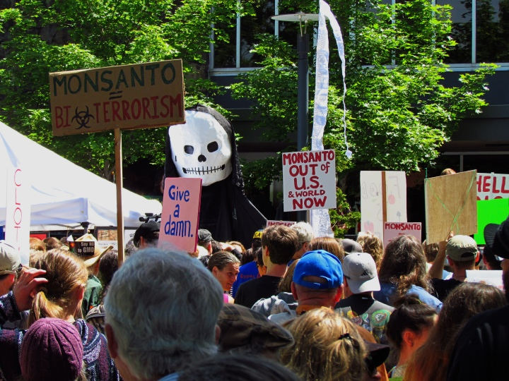 Monsanto 2.jpg