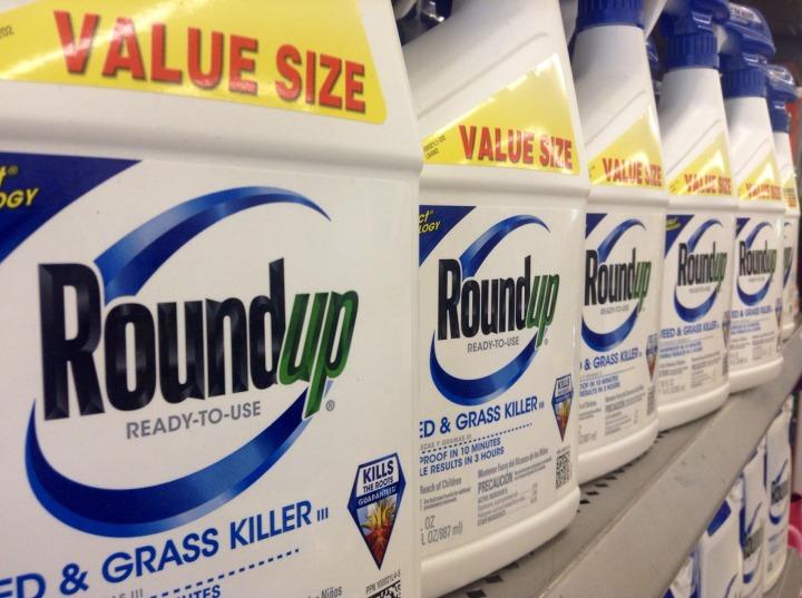 Monsanto 3.jpg